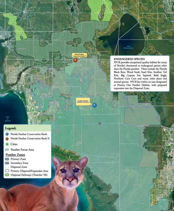 Florida Panther Conservation Bank The Mitigation Banking Group